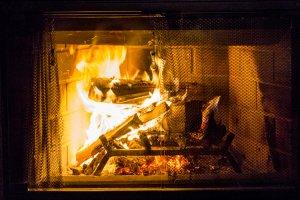 Windigo feu de bois